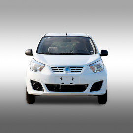 DongFeng_ER30_06